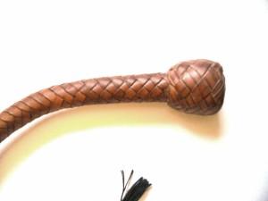 Snake Whip (3)