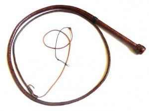 Target Whip (11)